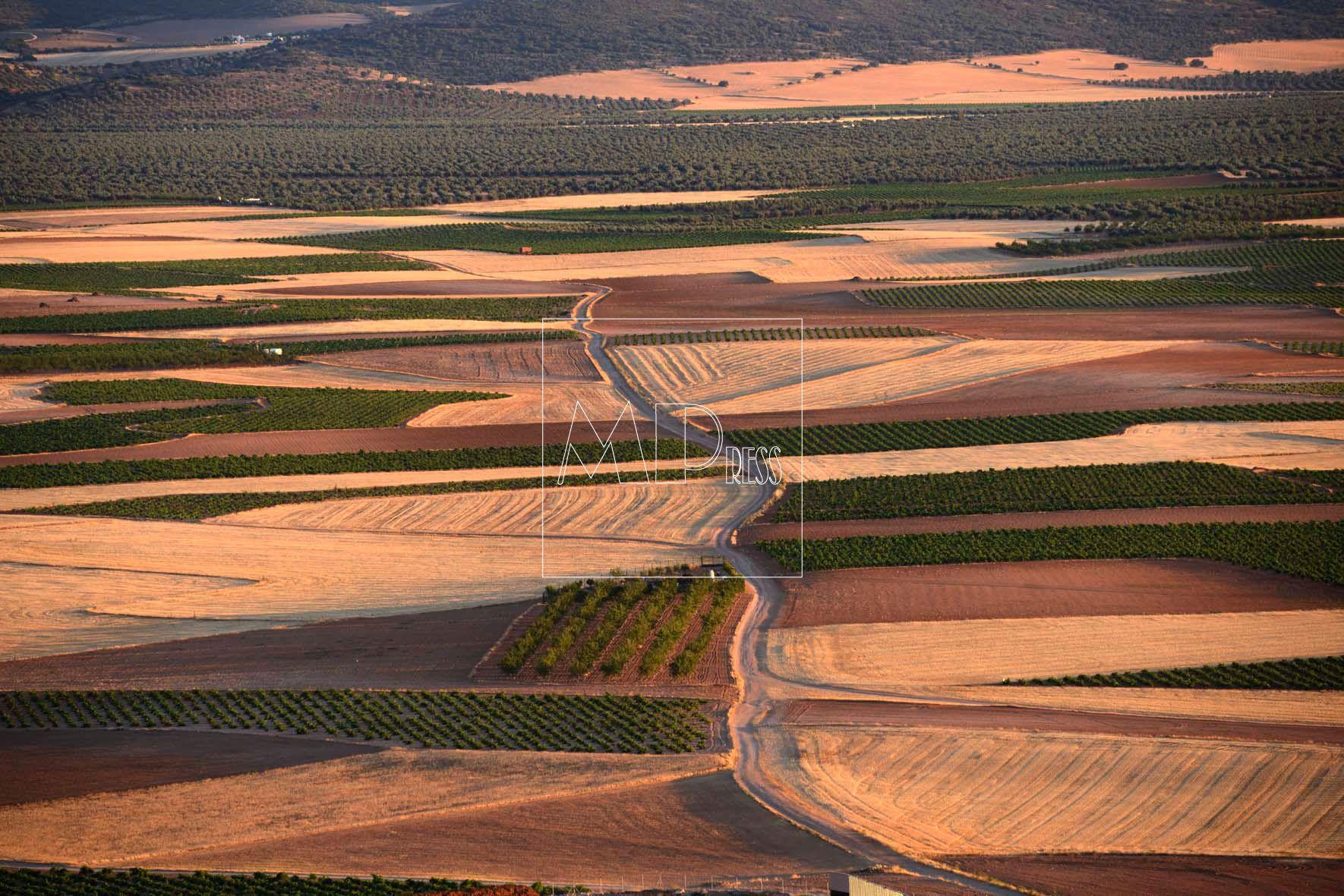 Tierras de cultivo de Castilla la Mancha