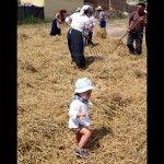 segadores y cosechadoras