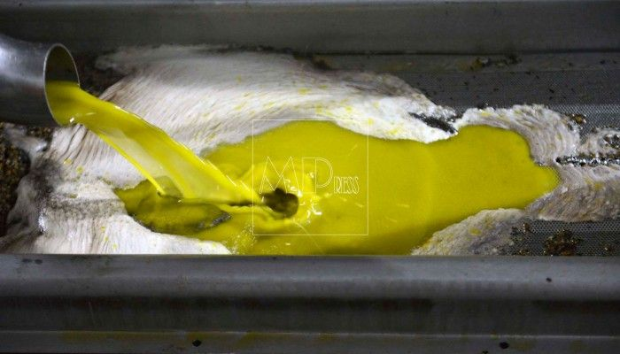 aceite de oliva virgen Rute